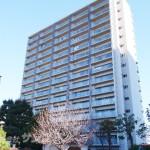 中古マンション情報・サーパスシティ桜通りパークウイング・宇都宮市桜4丁目(46909)
